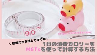 METsを使った計算:アイキャッチ